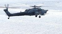 Rusų sraigtasparnis (nuotr. SCANPIX)