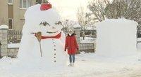Kalnai sniego – ne tik vargas: lietuviai demonstruoja vis kūrybiškesnes skulptūras (nuotr. stop kadras)
