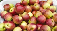 Obuoliai (Nuotr. valstietis.lt)