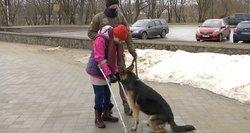 Lietuvoje tokie – vos keli: šuo asistentas palengvina gyvenimą turintiems negalią