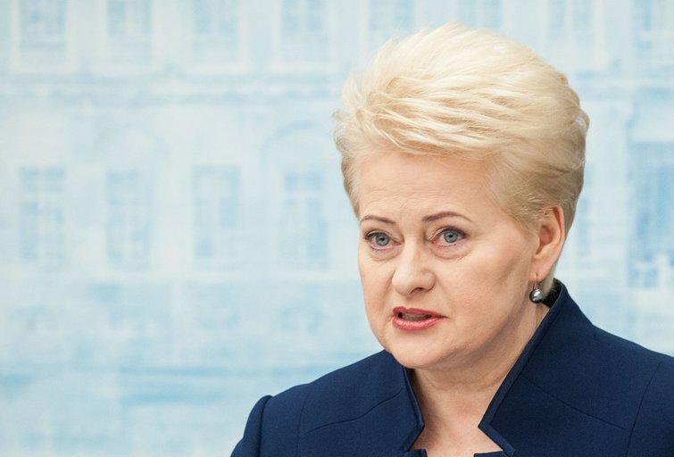 D. Grybauskaitė skaito metinį pranešimą (nuotr. Fotodiena.lt)