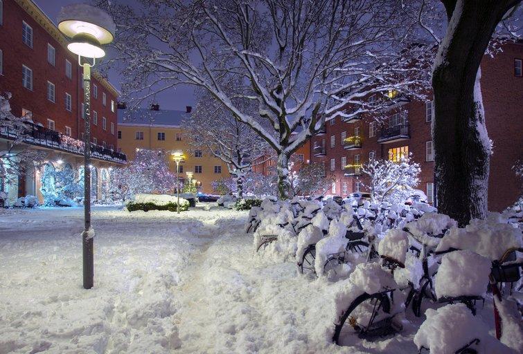 Žiema Stokholme  (nuotr. Fotolia.com)
