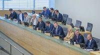 Skvernelio Vyriausybė atlaikė išbandymą Seime (nuotr. Fotodiena/Rokas Lukoševičius)