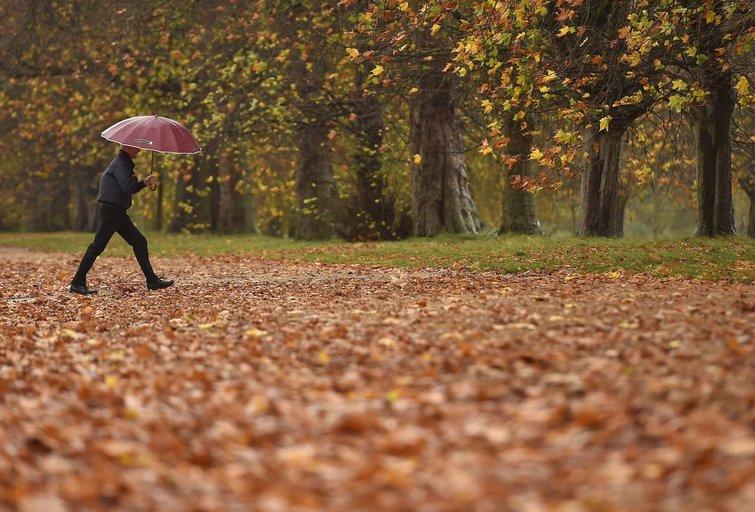 Rudeninis lietus (nuotr. SCANPIX)