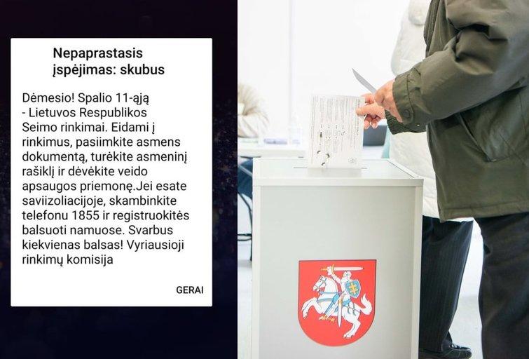 Rinkimai (tv3.lt koliažas)