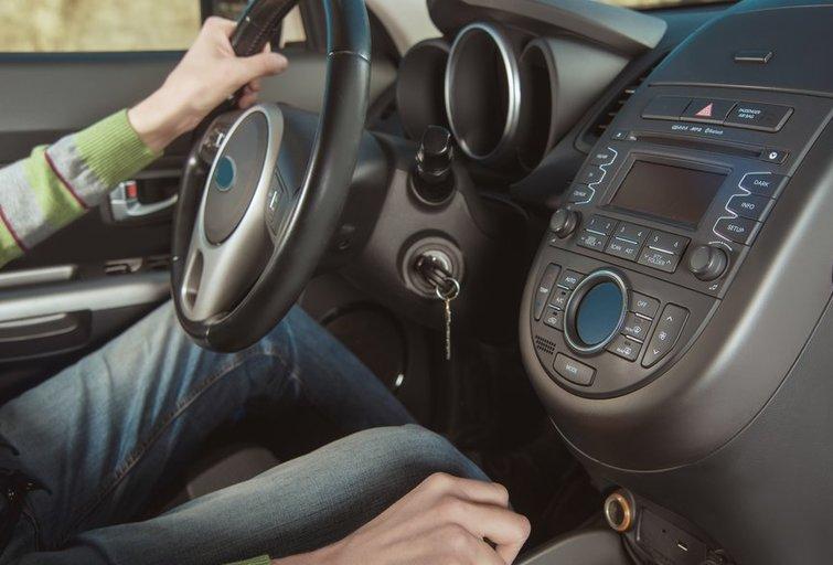 Automobilio vidus (nuotr. Shutterstock.com)