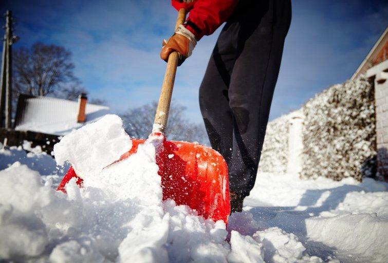 Sniego kasimas  (nuotr. Shutterstock.com)