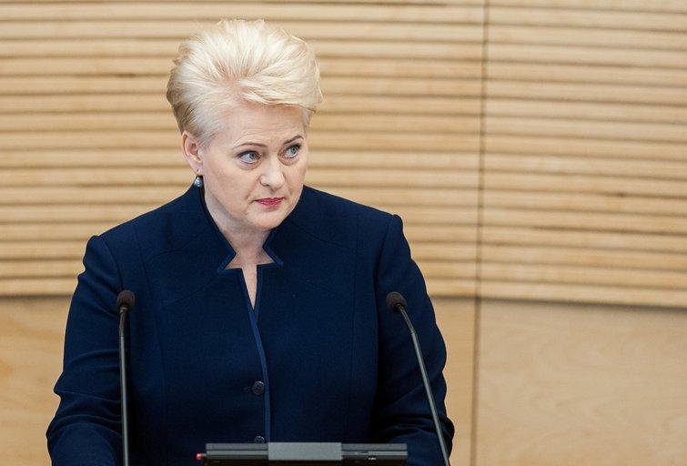Dalia Grybauskaitė (nuotr. Fotodiena.lt)