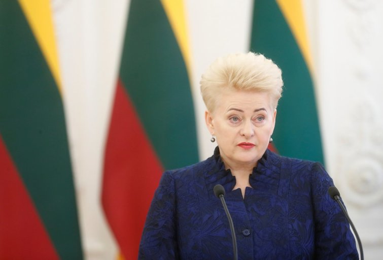 D. Grybauskaitė (nuotr. SCANPIX)