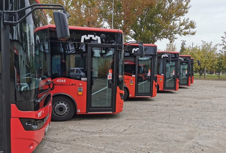 Autobusai (nuotr. Organizatorių)
