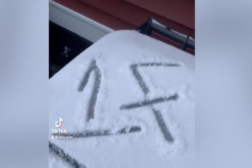 Ant savo šiukšliadėžės moteris pamatė keistą simbolį: sužinojusi jo reikšmę, liko sukrėsta (nuotr. stop kadras)