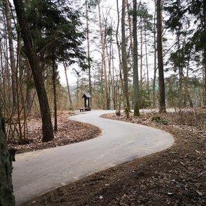 Skelbia apie naują taką Lietuvoje: vaizdai čia užburia