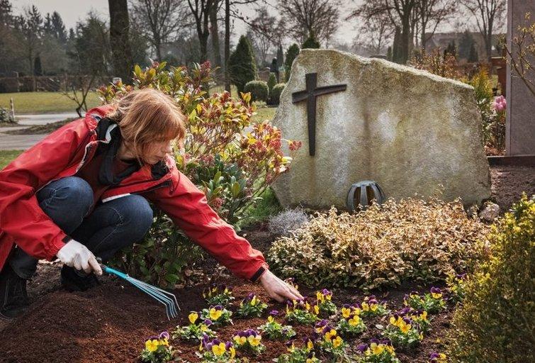 Kapų tvarkymo sezonas prasideda pavasarį. (nuotr. Shutterstock.com)