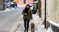 Žiema sostinėje (Fotodiena/ Viltė Domkutė)