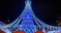 Vilniaus Kalėdų eglutės įžiebimas (nuotr. Fotodiena/Justino Auškelio)