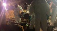 Brazilija nebespėja laidoti gyventojų – laidotuvės vyksta ir naktį (nuotr. stop kadras)