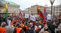 Protestas (Fotodiena/Vilius Jurgelevičius )