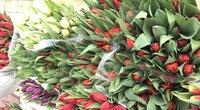 Gėlių pardavėjai laukia pirkėjų antplūdžio