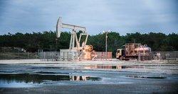 Pigios naftos pavojus