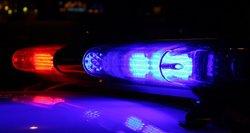 Tragedija JAV: moteris apkaltinta savo trijų mažamečių vaikų nužudymu