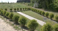 Liepynės kapinėse įrengta mirusiųjų pelenų barstymo vieta kaitina aistras