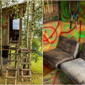 Neįtikėtini seno namelio medyje pokyčiai: tokio pavydėtų net suaugę