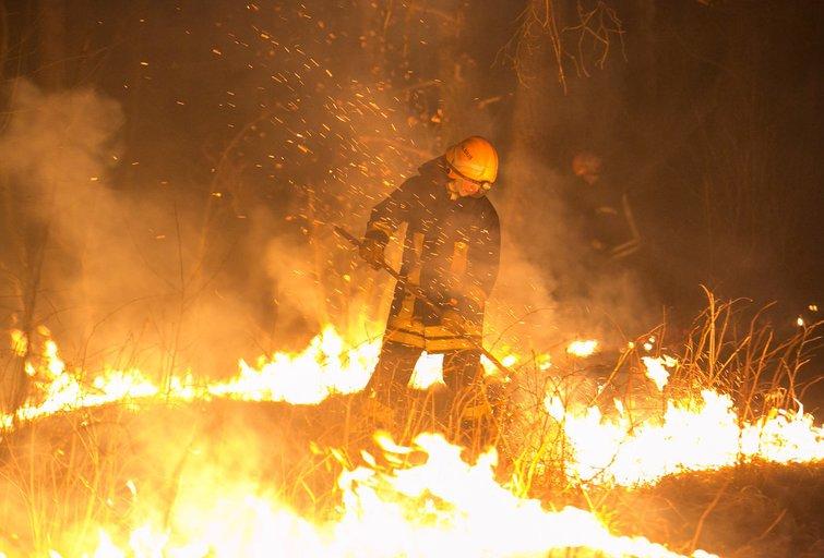 Dėl gaisro pavojaus ribojamas lankymąsis miškuose (nuotr. fotobankas.lt)