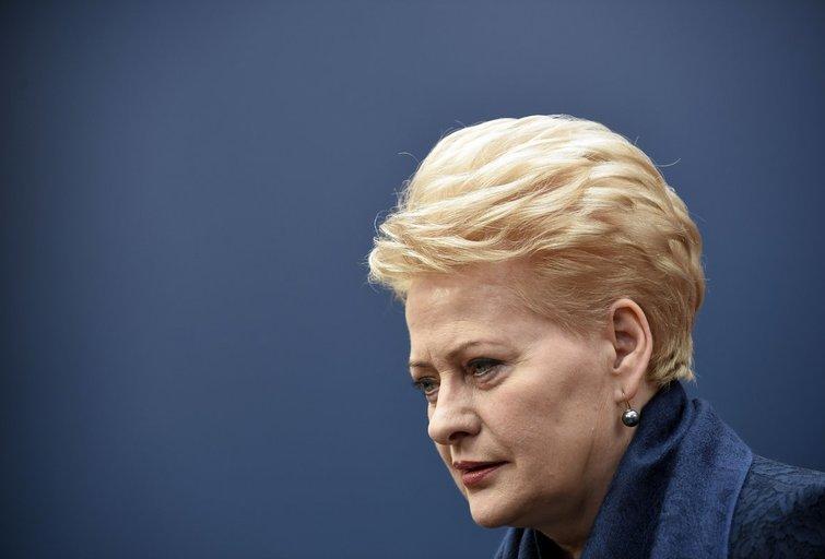 """""""Raudonoji Dalia"""" atskleidė: Europoje aktyviai veikia puikiai finansuojami Kremliaus žmonės (nuotr. SCANPIX)"""