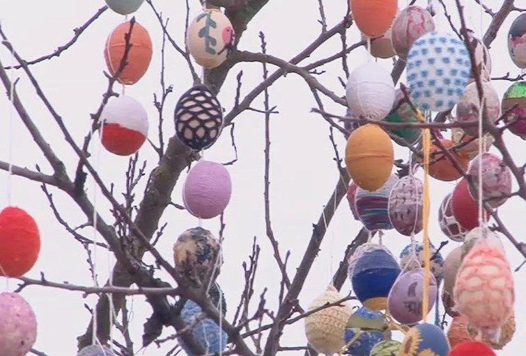Margučių medis (nuotr. TV3)