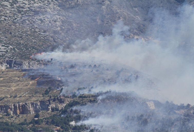 Miškų gaisrai Graikijoje (nuotr. SCANPIX)