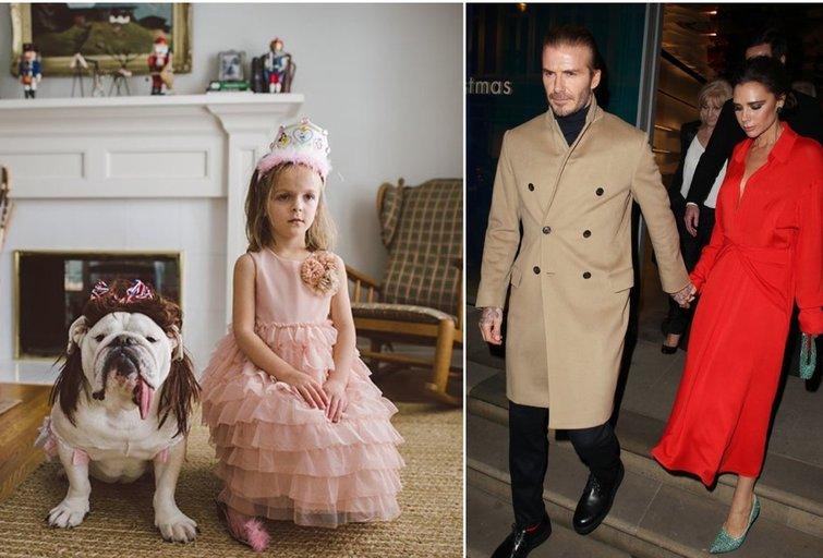 Harper Beckham nustebino savo poelgiu (tv3.lt fotomontažas)