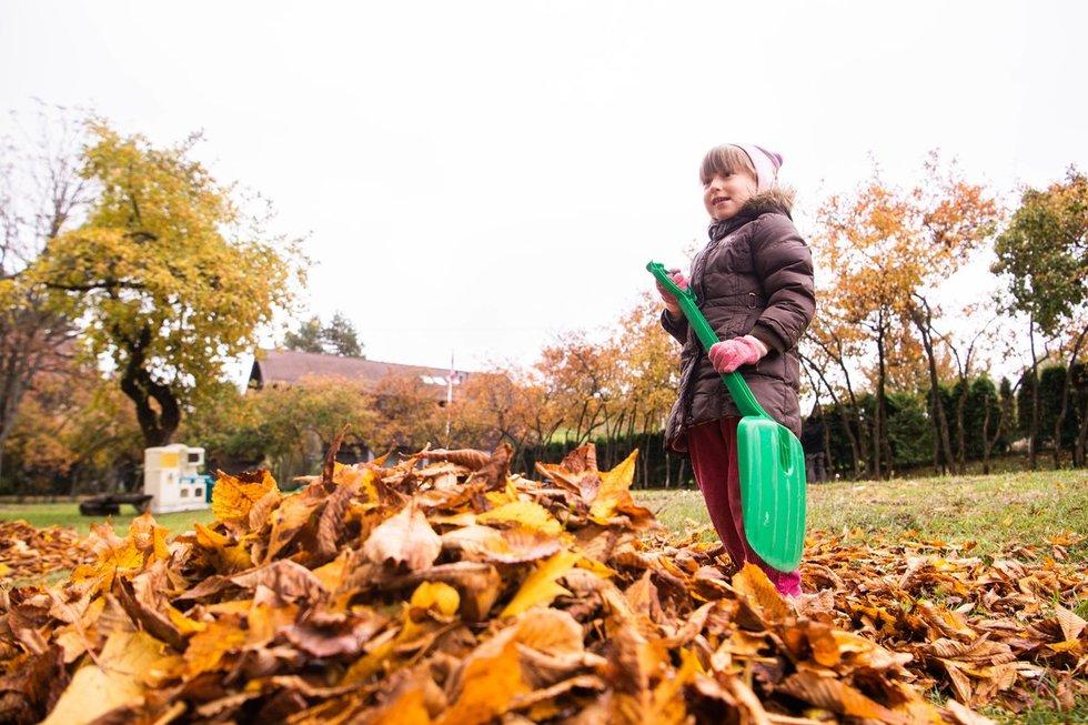 Vaikai skuba padėti dirbti lapų išvežti atvažiavusiems darbuotojams