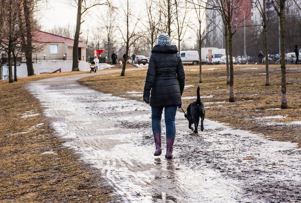 Mergina vedžioja šunį (nuotr. Fotolia.com)