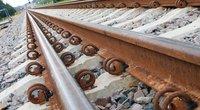 Geležinkelio bėgiai (nuotr. BFL)