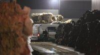 Antrinių žaliavų perdirbimo įmonėje po presu žuvo vyras (nuotr. Broniaus Jablonsko)