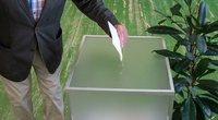 Rinkėjai balsuoja prezidento rinkimuose (Fotodiena/Justinas Auškelis)