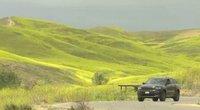 Kalifornijoje 14 tūkst. arų nusižadė geltona spalva: pražydo milžiniškų garstyčių laukai (nuotr. stop kadras)