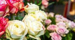 Valentino dienos puokštė – iki 130 eurų: kainos siaubingos ir patiems pardavėjams
