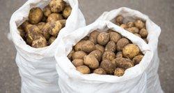 Kainų pokyčiai vasarį: pigo kosmetika, bet ženkliai brango bulvės