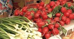 Pirkėjai piktinasi – šviežios daržo gėrybės šiemet brangesnės