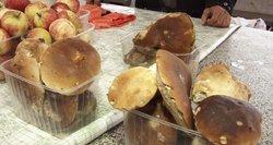 Ekspertai pataria, kaip grybų išsiauginti pačiam