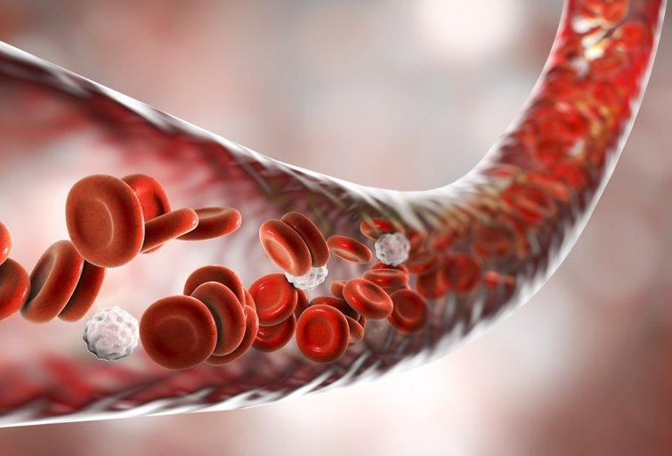 Kraujas (nuotr. Shutterstock.com)