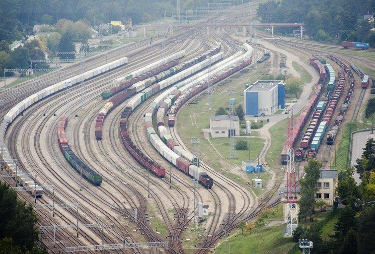 Geležinkelis (nuotr. Fotodiena.lt/Audriaus Bagdono)