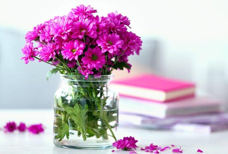 Gėlės namuose (nuotr. Shutterstock.com)