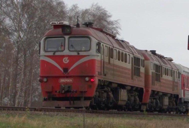 Traukinys (nuotr. stop kadras)