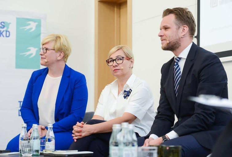 TS-LKD Seimo rinkimų programos projekto pristatymas (nuotr. Fotodiena/Justinas Auškelis)