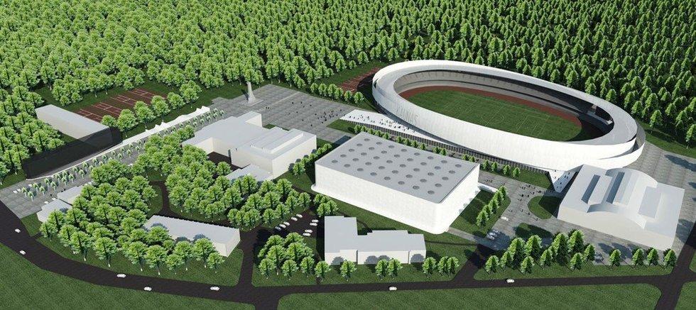 Būsima Dariaus ir Girėno stadiono rekonstrukcija (nuotr. Organizatorių)