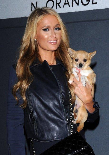 Paris Hilton (nuotr. Vida Press)