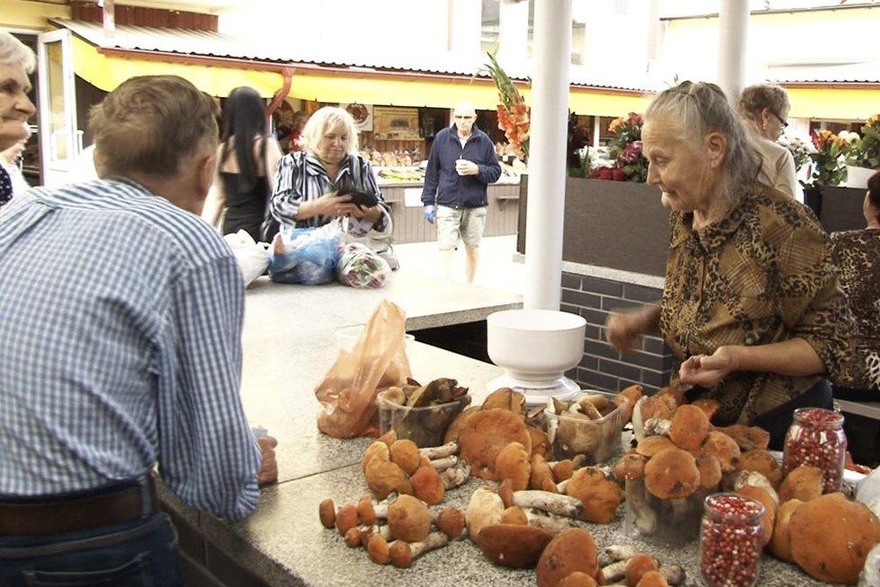 pensininkai Lietuvoje (nuotr. stop kadras)