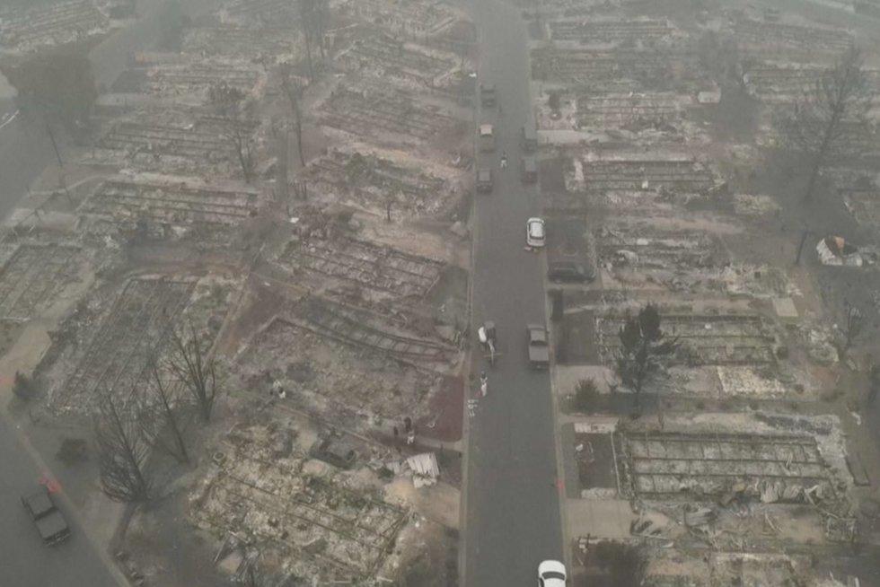 JAV siaučia gaisrai (nuotr. stop kadras)